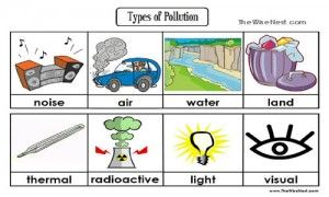 Types of Pollution CC Cycle 2 Week 6