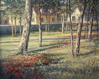 'Back Yard',  by Pierre Morin -