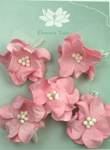 Green Tara Apple Blossoms 5pk ~ Pink | Always Treasured Scrapbooking