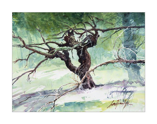 Vaucluse, Bedoin, aquarelle arbre