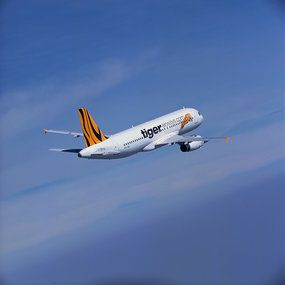 Tiger airlines (2010)