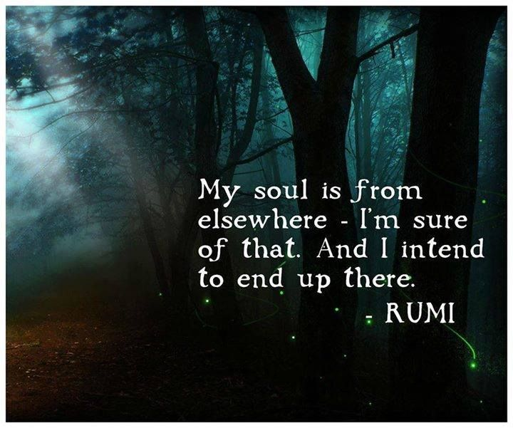 My Soul Is From Elsewhere Philosophy Pinterest Rumi Quotes