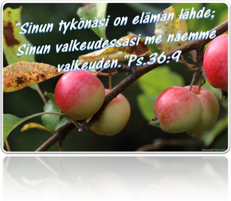 Ps.36:9