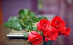 Bunga Mawar Merah | flo0126