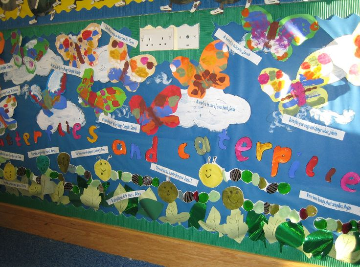 Butterflies and caterpillars classroom display photo - Photo gallery - SparkleBox