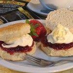 Cream, Heavy Cream, Sour Cream, Whipping Cream, Half and Half, ... Help!!!