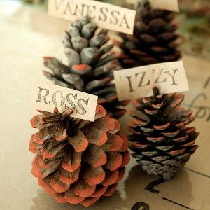 Harvest Affaire Pinecone Place Cards Project by Vanessa Spencer