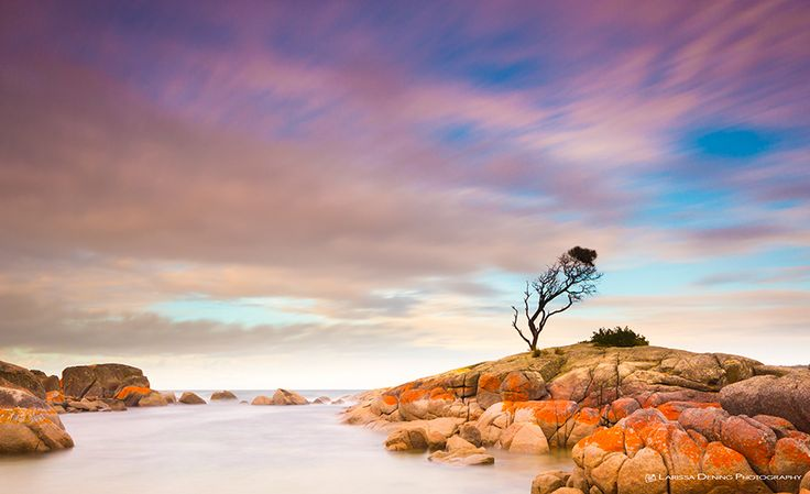 Mini Guide Monday: Binalong Bay, Tasmania Larissa Dening Photography | Explore.Capture.Live