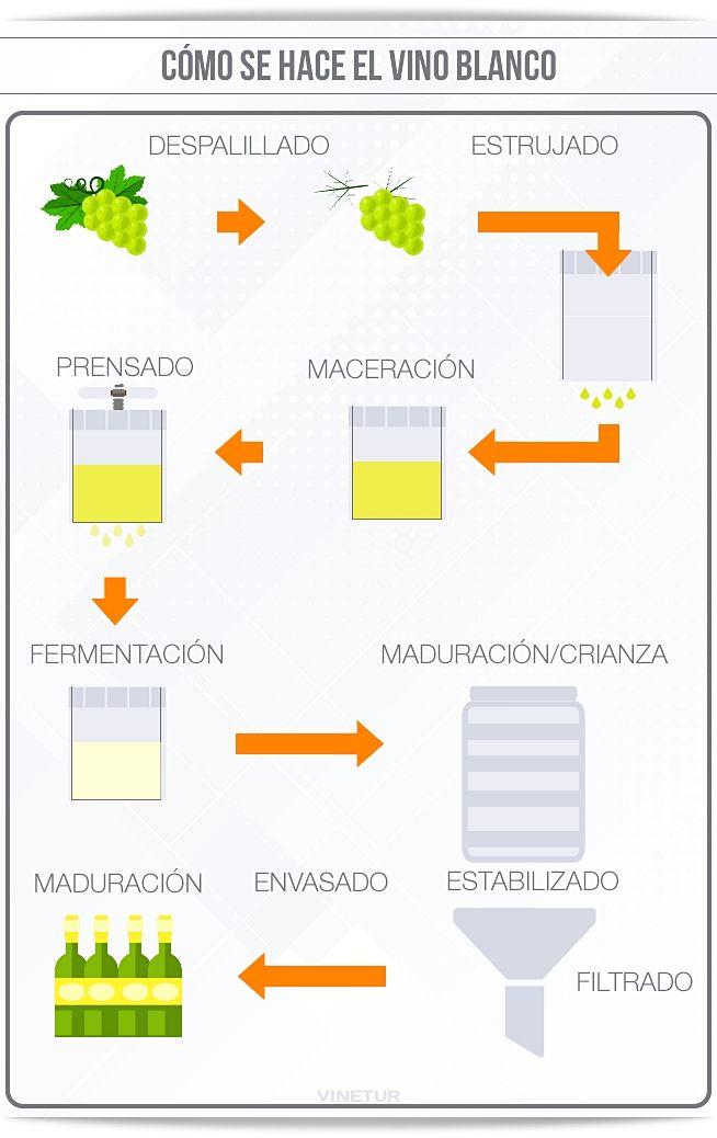Cómo Es El Proceso De Elaboración Del Vino Blanco Elaboracion Del Vino Vino Blanco Vino