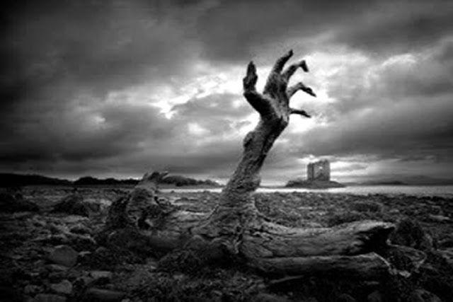 Inilah Tiga Hal Sepele Ini Dapat Memperberat Siksa Kubur http://ift.tt/2onrAJa  Pernahkah Anda membayangkan apa yang akan terjadi ketika kita berada di alam kubur? Alam kubur merupakan pintu tempat transit sebelum umat manusia memasuki dan menjalani kehidupan yang kekal dan abadi yaitu alam akhirat. Ternyata kenikmatan dan azab di alam kubur bukanlah sekedar isapan jempol. Bahkan kelak kita juga akan dihadapkan pada kenyataan bertemu dua malaikat yang akan memberikan beberapa pertanyaan…