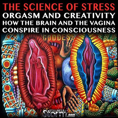 The Science of Stress, Orgasm and Creativity: How the Brain and the Vagina Conspire in Consciousness | Stillness in the Storm