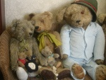 Teddy Bear collection @collectablepride.com