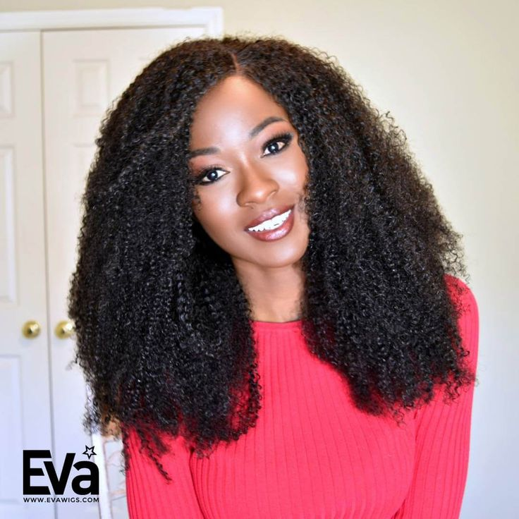 Natural Afro Kinky Curly Human Hair Full Lace Wig - Curly - EvaWigs