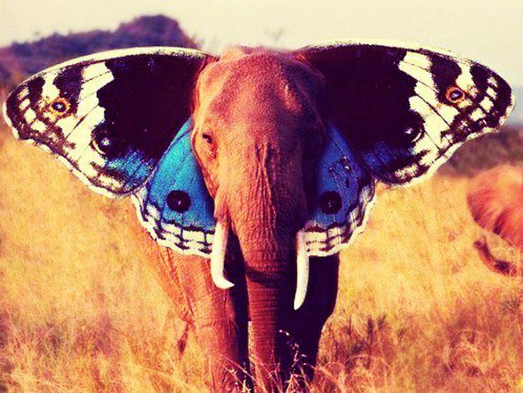 Dream. by heartlesslilith.deviantart.com on @deviantART