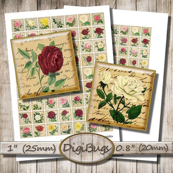 Old Roses, Vintage Letters Postcards, Digital Collage Sheet, 25 mm, 20 mm Squares, Rose Inchies, Digital Rose Images, Instant Download, a4