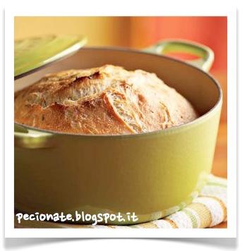 Le pecionate: Il pane senza impasto, una ricetta semplice che permette di ottenere panini, ciabatte, filoni, pane ripieno fatto in casa senza fatica e senza nemmeno sporcarsi le mani!