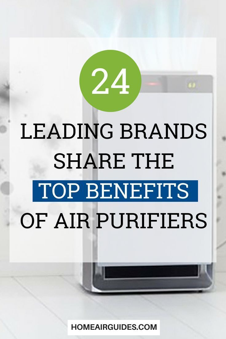 The Benefits Of Air Purifiers 24 Top Brands Share Their Insights