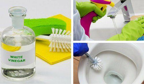 El vinagre blanco es un producto ecológico que nos puede servir para dejar el baño impecable. ¡Descubre cómo!
