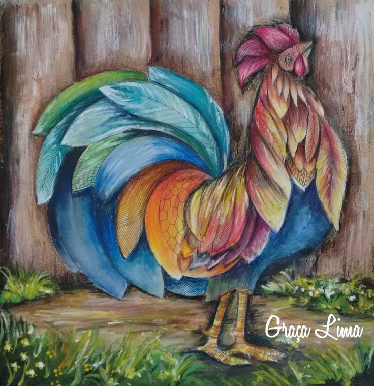Coloring Books Colouring Animal Kingdom Photo And Video Chicken Tropical Stones