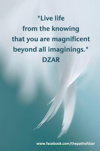 """Live life from the knowing that you are magnificent beyond all imaginings."" DZAR"