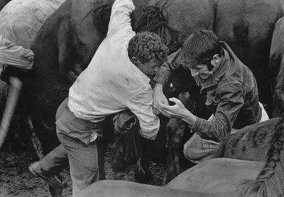 A rapa das bestas, San Lorenzo de Sabucedo, La Estrada, 1970. Rafael Sanz Lobato