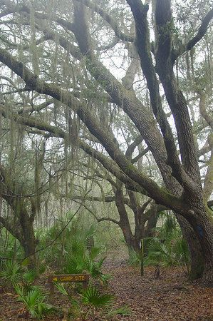 List of Central FL trails