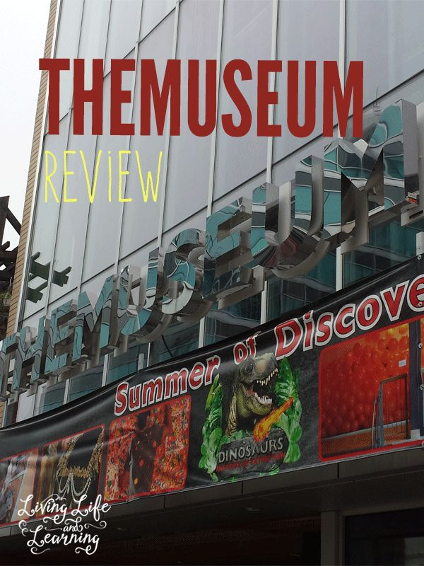 THEMUSEUM-review