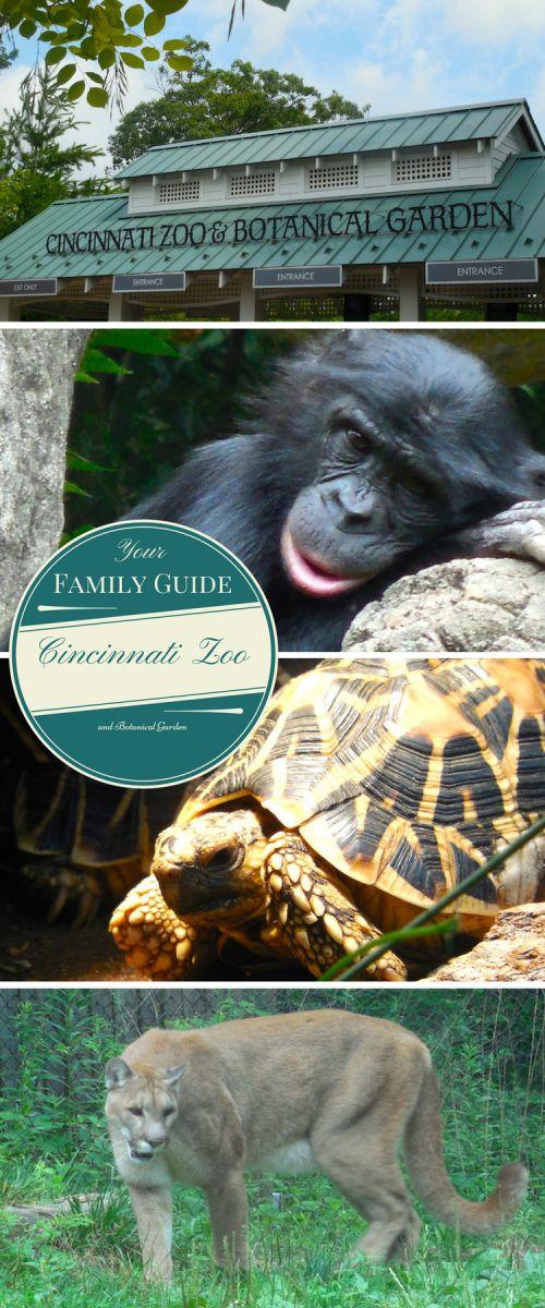 Cincinnati Zoo & Botanical Garden in Ohio, the Greenest Zoo in America. #travel