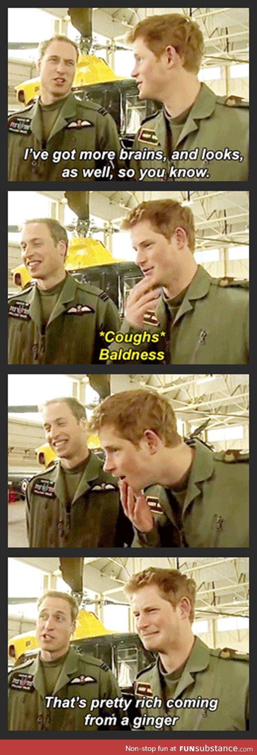 Princes William and Harry...they may be royalty but they are still regular siblings.