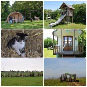heel veel leuke idyllische campings in Nederland met kids: Camping de Boshoek