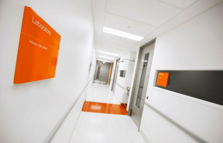 Peinture orange pas de porte