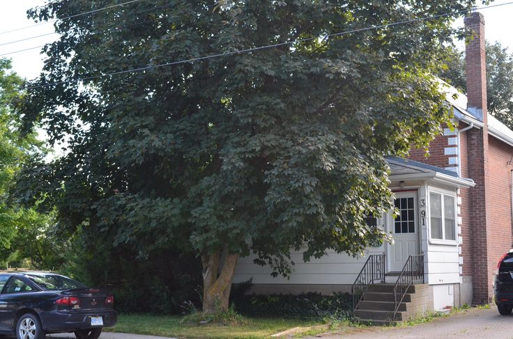 3 BEDROOM 2-STOREY BRICK HOME. NICE SUNROOM TO RELAX AND ENJOY. GORGEOUS LARGE PRIVATE LOT. POSSIBLE SEVERANCE. JUST A SHORT WALK TO THE PUBLIC SCHOOL, GROCERY STORE AND ARENA. HARDWOOD FLOORS THROUGHOUT. STEEL ROOF. GREAT LOCATION. CALL NOW TO VIEW TODAY!
