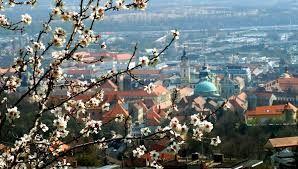 Pécs-látkép
