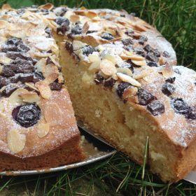 Borůvkovo-čokoládový koláč RUMINI