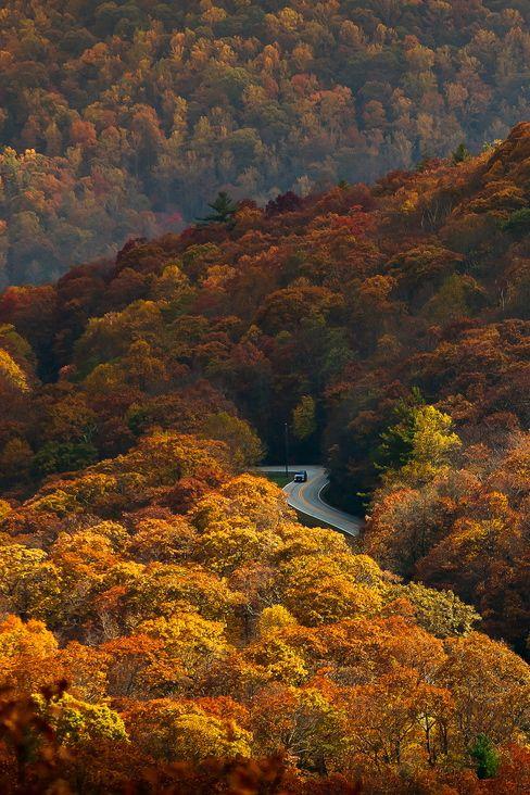 autumn vastness