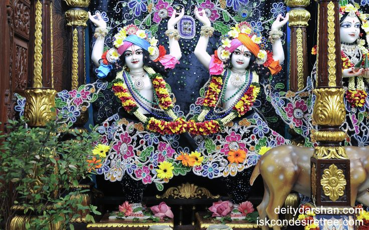 To view Gaura Nitai Wallpaper of ISKCON Chowpatty in difference sizes visit - http://harekrishnawallpapers.com/sri-sri-nitai-gaurachandra-wallpaper-007/