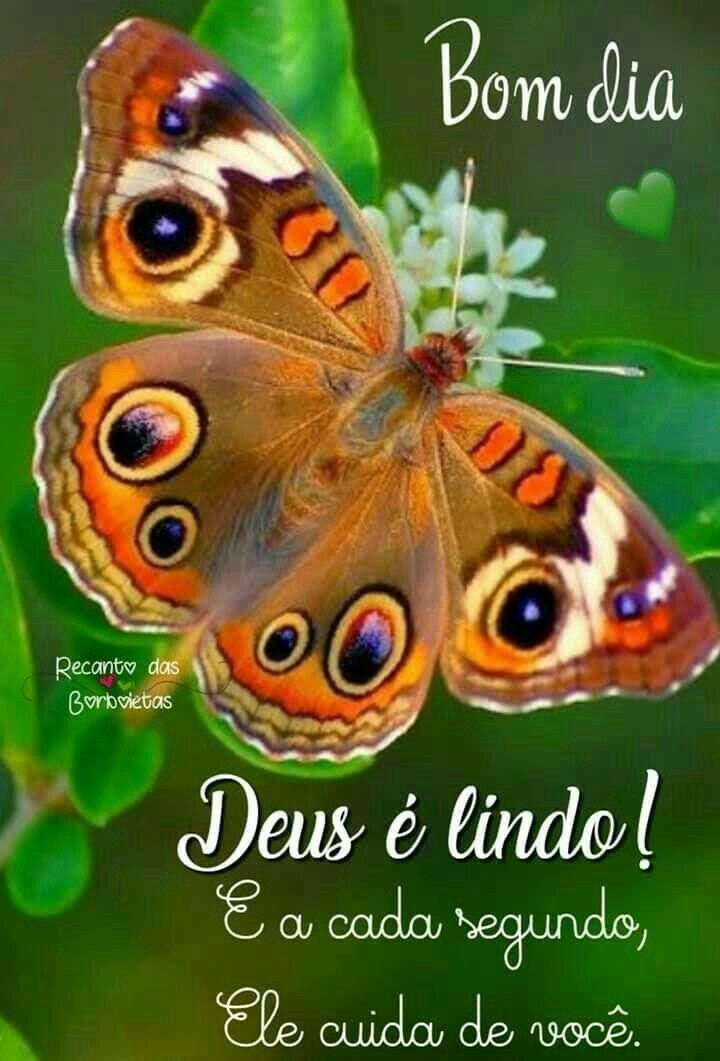 Bomdia Com Imagens Mensagens De Jesus Mensagens De Bom Dia