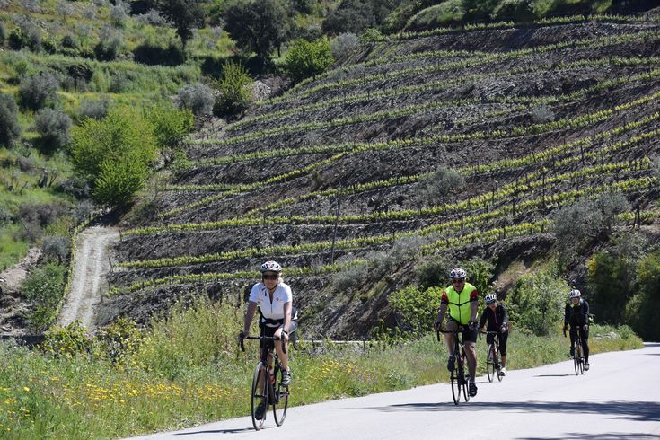 Come and join A2Z in some unique cycling trips in a region that will blow your mind with it's unique landscape, gastronomy, wine and beautiful wine hotels.