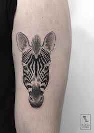 Image result for fighting zebra tattoo