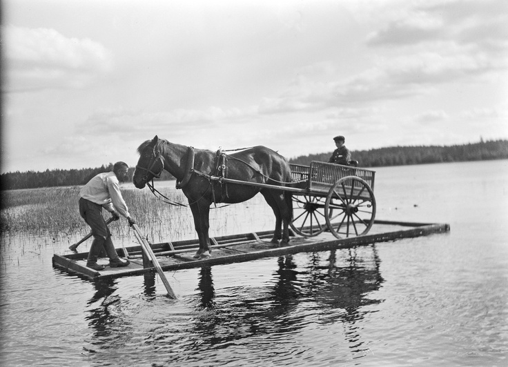 Finnish horse on raft - Finland