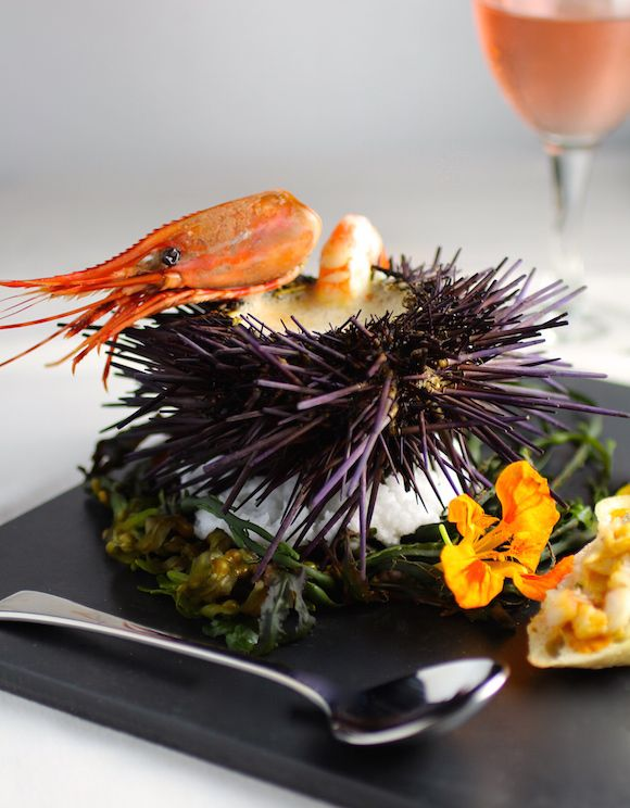 :Sea Urchin Bisque   #plating #foodstyling