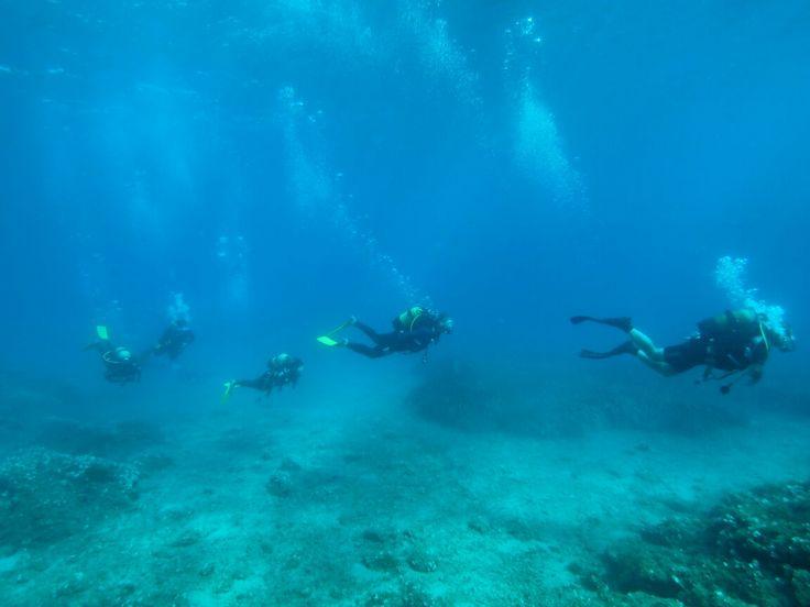 Ayvalık dalış okulu - ida dalış merkezi #scuba #scubadiving #diving #underwater #dalisnoktam #ayvalikdalis #ayvalık #ayvalikscuba #daliskursu #dalismerkezi #idadalismerkezi www.idadiving.com