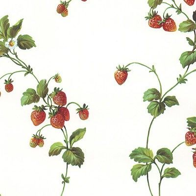 Have Strawberry Wallpaper With Border Of Strawberry
