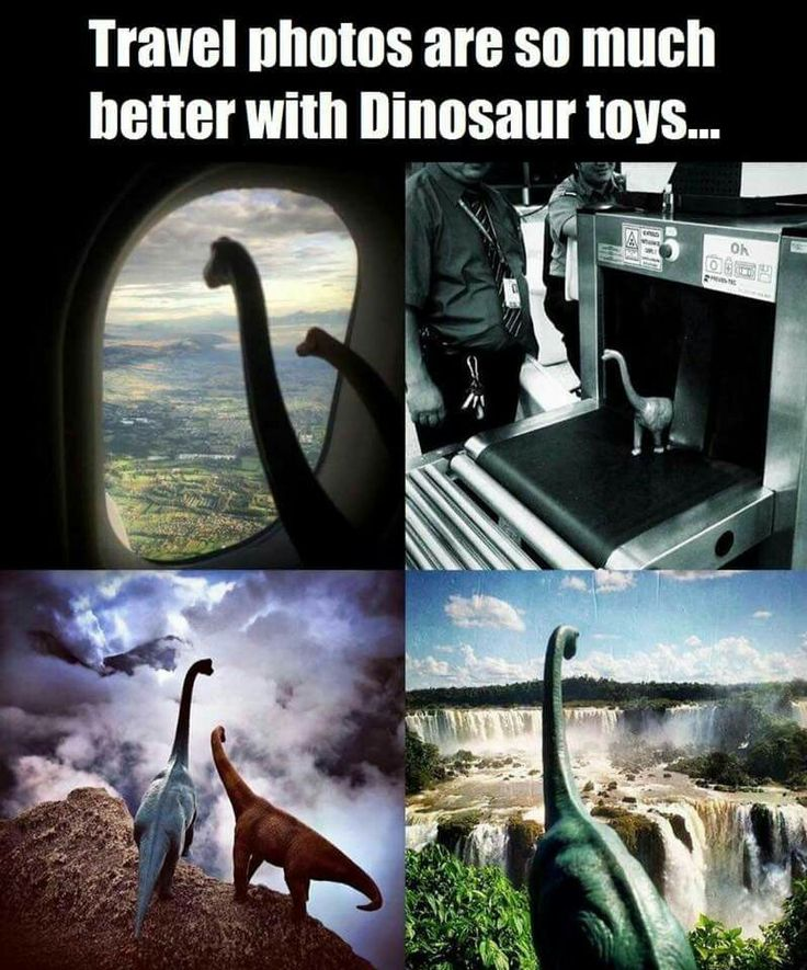 Travel with a dinosaur