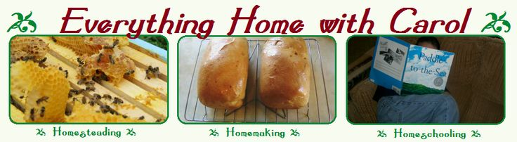 Homemade Whole Wheat Bread Recipe - Everything Home with Carol