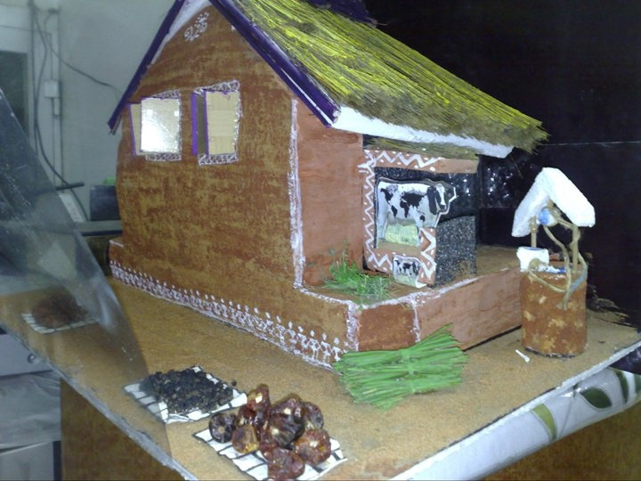 A Hut Kutcha House Diy Pinterest Photos And House