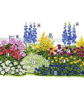 Toutes ces plantes sont des vivaces faciles qui refleuriront chaque année superbement. N'oubliez pas de les arroser, l'eau est un facteur important pour leur développement! Pour stimuler et prolonger la floraison, il est conseillé de supprimer les fleurs fanées au fur et à mesure, en période de floraison.  Collection des 3 saisons, 27 plantes en 9 variétés | Plantes | Bakker France