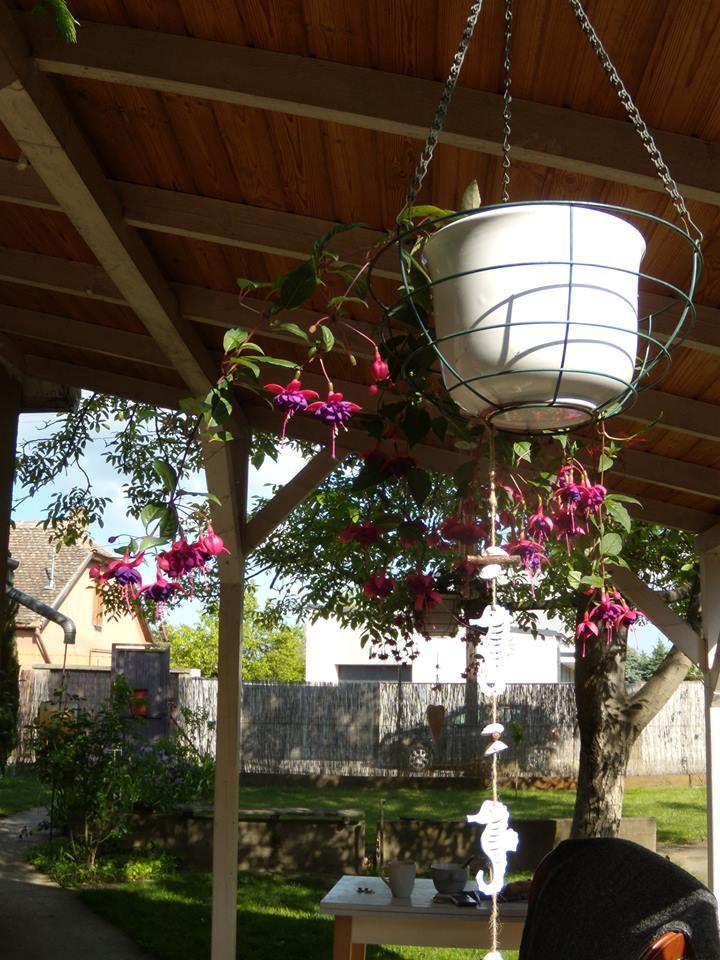 Secret garden ...My home .... love... <3