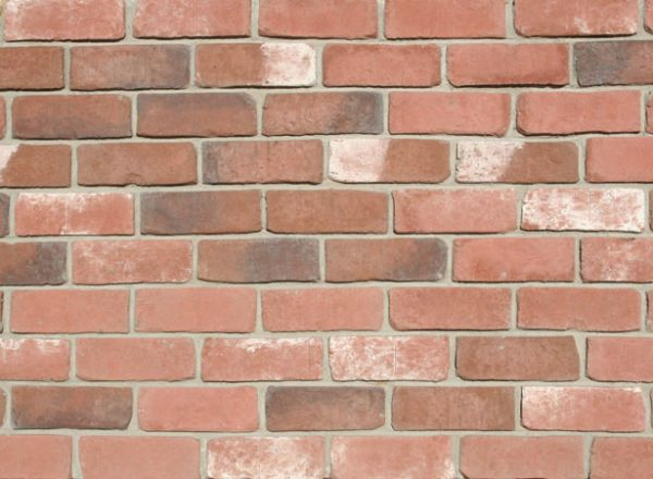 Tumbled Thin Brick Veneer (Color: Park City)