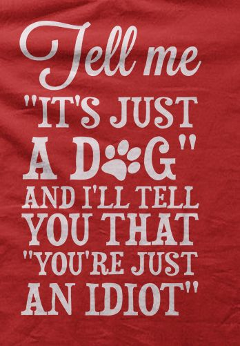 Totally. I don't care what you think, that dog is/was my best friend and I will forever treat them as family.